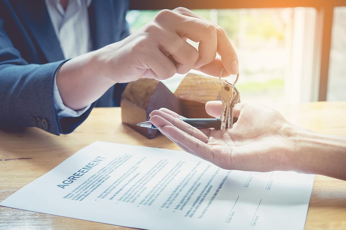 שירותי מחשוב לעסקים בתחום עורכי דין